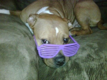 Willow with purple glasses.