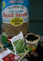 Sprouting Seeds