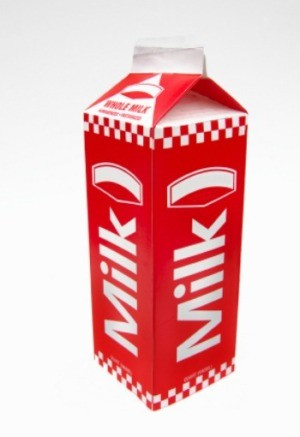 Uses for Milk Cartons