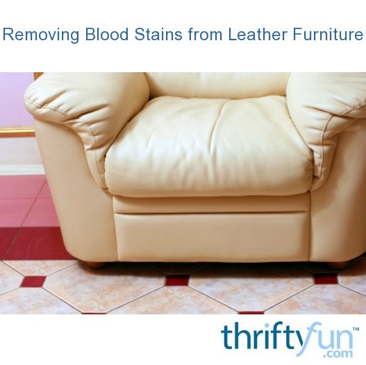 Removing Blood Stains from Leather Furniture | ThriftyFun