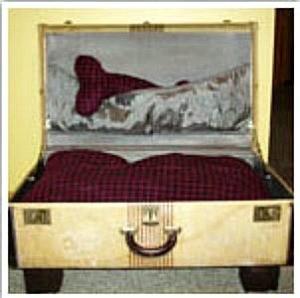Suitcase Dog Bed