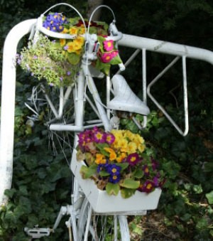 bike flower planter