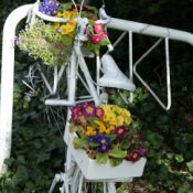 bike flower planter