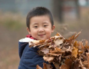 A cute kid holding leaves.