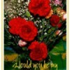 Photo note card with carnations.