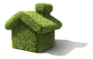House shape covered in green carpet like material.