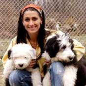 A woman with two English Sheepdogs.