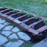 Herb garden next to pathway.
