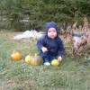 Kids and Pumpkins