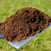 Using Compost In The Garden