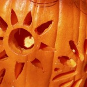 A flower or sun pattern carved into a pumpkin.