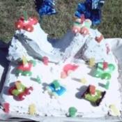 Skakeboarding ramp cake.