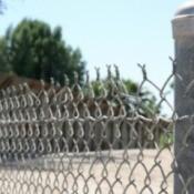 Galvanized Fence Posts