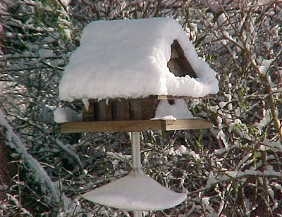 Closeup of snow covered birdfeeder.