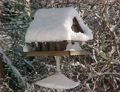 Closeup of snow covered birdfeeder.