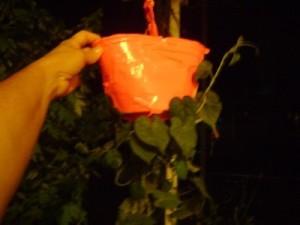 An upside down tomato planter.