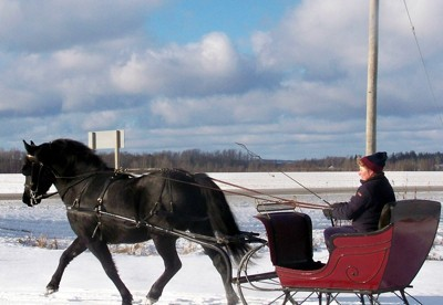 closeup of pulling a sleigh