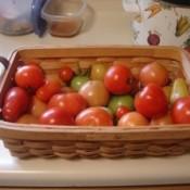 unripe tomatoes