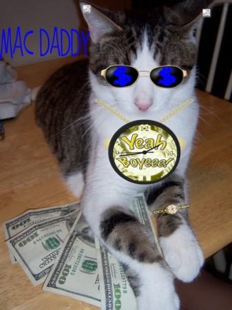 Mac (Cat)