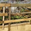 Rose Prunings To Keep Animals Out Of Garden Beds