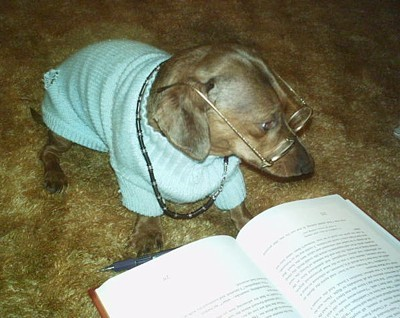 Scrappy with Glasses and Book