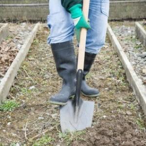 Digging a garden.