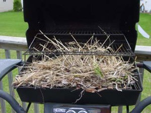 Keeping Birds from Nesting in a BBQ Grill
