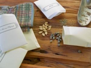 seeds on table
