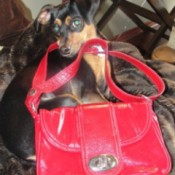 Ava and red purse.