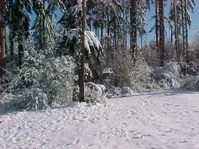Snowcovered birdfeeder across the yard.