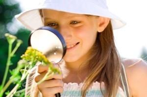 Summer Education Tips