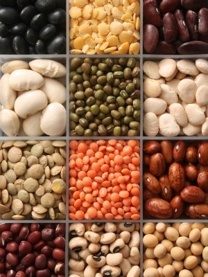 variety of dry beans
