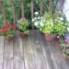 Deck Flowerpots