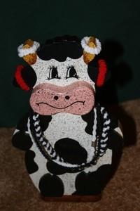 cow hair band organizer