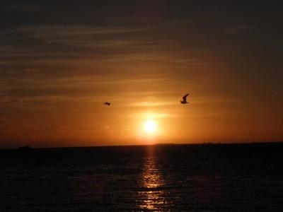 Sunset (Key West, FL)