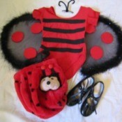 child's ladybug costume