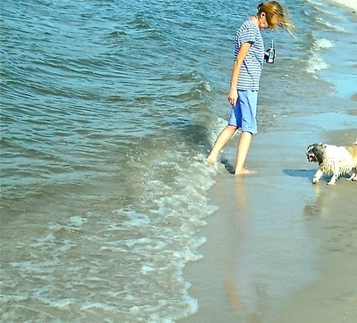 Tulip a Shih-tzu on the beach with a woman.