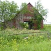 A rustic wooden barn in Iowa.