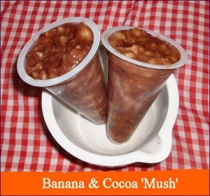 banana cocoa mush in plastic container