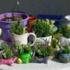various containers and pots