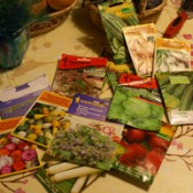 How Long Can You Store Seeds?