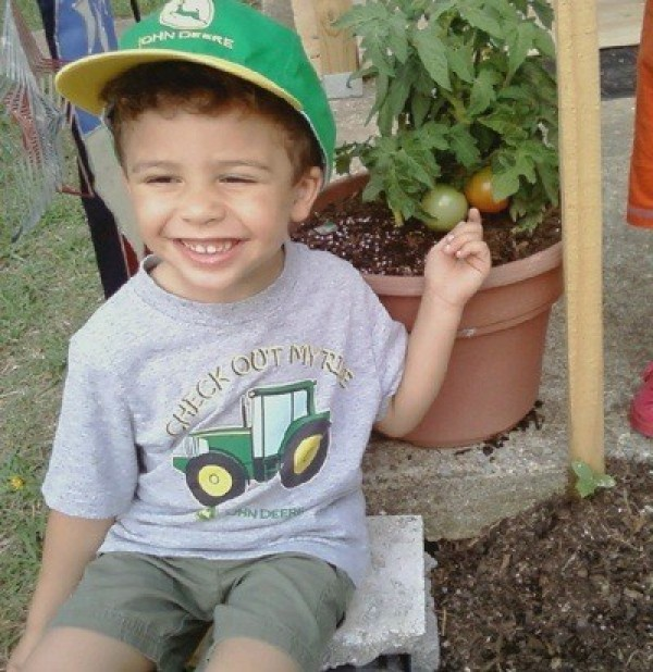 A small boy pointing at the garden tomatoes growing in a pot.
