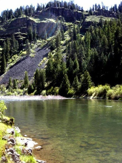 Photo of river with evergreen trees in background reflecting on the surface.