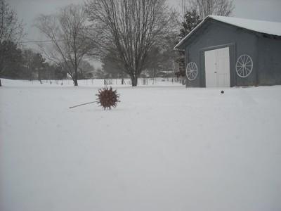 Gumball lying on the ice.