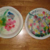 Paper plates with raindrop color splatters