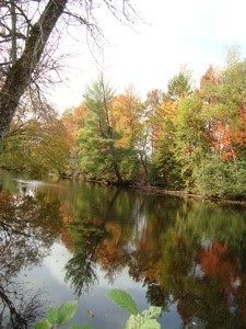 A water scene from Bancroft, Ontario.