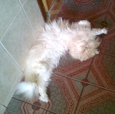 Stretching.