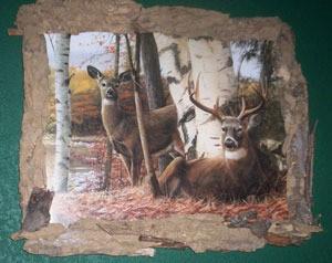 Bark covered frame.