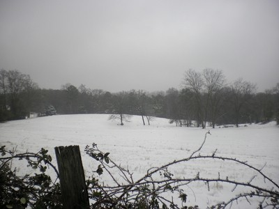 Snowy field and barbed wire fence in foreground.