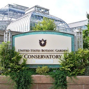 Five Great Reasons To Visit a Botanical Garden